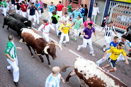 Risky Bulls.jpg
